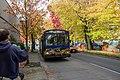 Last Day of the Breda Trolleybuses (29980009053).jpg