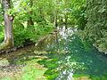 Le Cresson rivière à Fontaine.JPG