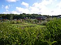 Les jardins familiaux de la poterie - panoramio.jpg