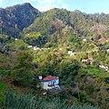 Levada Wanderungen, Madeira - 2013-01-10 - 85900206.jpg