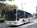 Ligne 5 du bus à Digne.jpg