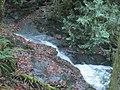 Little waterfalls along Padden Creek (8226293094).jpg