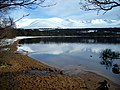 Loch Morlich and Cairngorm - geograph.org.uk - 764621.jpg