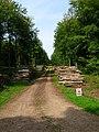 Log Piles, Eartham Wood - geograph.org.uk - 236533.jpg