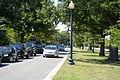 Looking N along Ohio Drive East - East Potomac Park - 2013-08-25.jpg