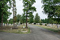 Looking N on Brich Avenue - Glenwood Cemetery - 2014-09-19.jpg
