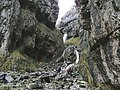 Looking into Gordale - geograph.org.uk - 604642.jpg