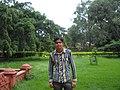 Losal, Rajasthan 332025, India - panoramio (1).jpg