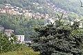 Lugano, Switzerland - panoramio (77).jpg