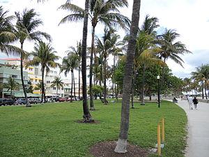Lummus Park, Miami Beach - Image: Lummus Park Miami Beach Grass