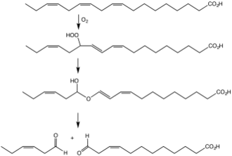 Hydroperoxide lyase - An illustrative transformation involving a hydroperoxide lyase.  Here cis-3-hexenal is generated by conversion of linolenic acid to the hydroperoxide by the action of a lipoxygenase followed by the lyase-induced formation of the hemiacetal.