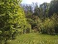 MD.RS - rezervația naturală silvică Stînca - apr 2018 - 08.jpg