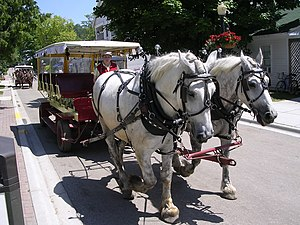 Grand Hotel (Mackinac Island) - Guests are transported from the docks to the hotel via horse-drawn carriage.