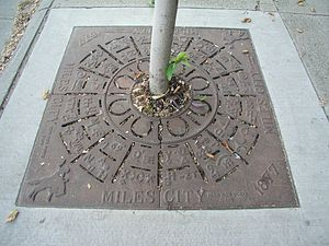 Storm Water Management Model - Main Street Tree Planter, Miles City (281991376)
