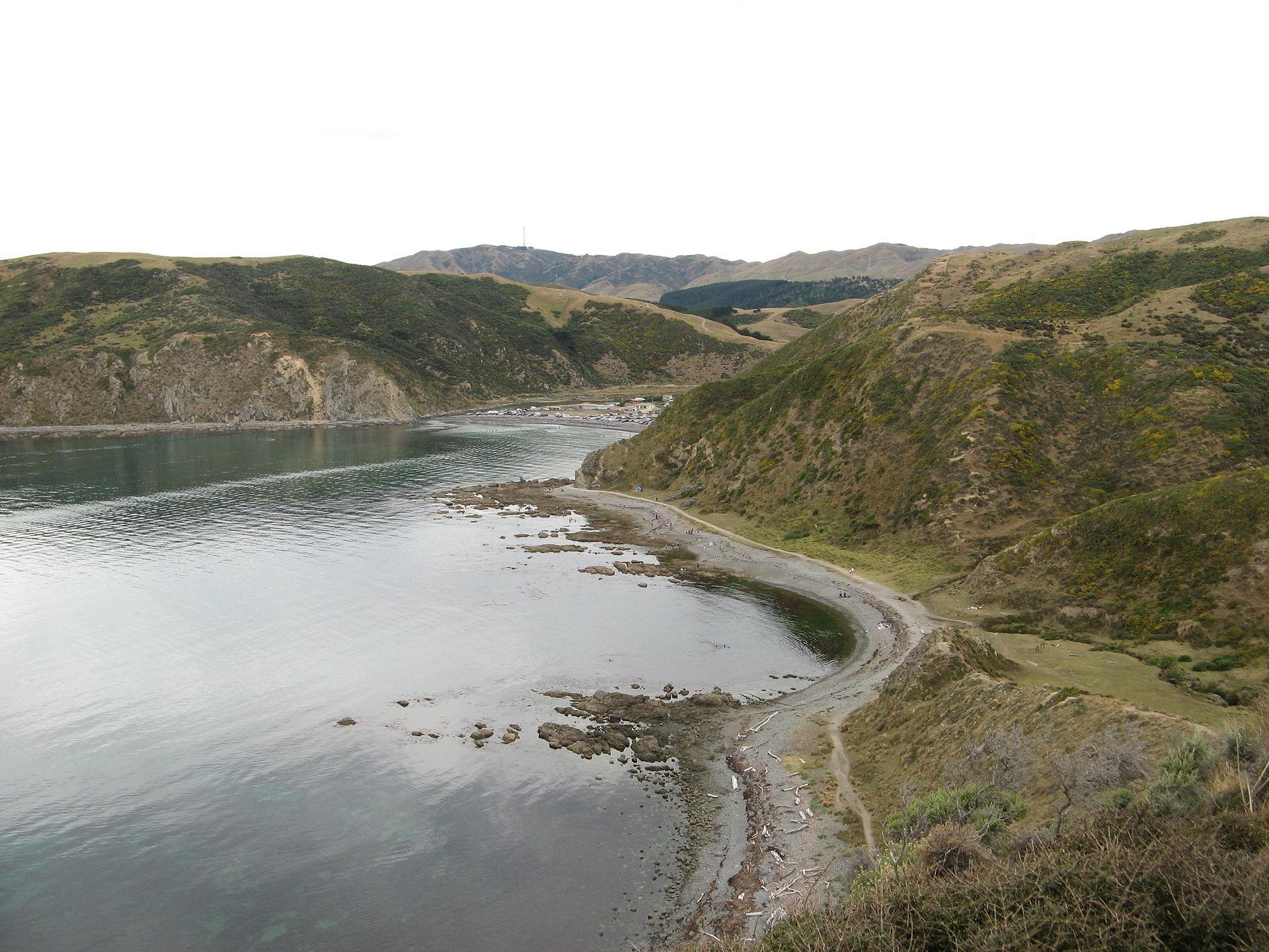 Teroris New Zealand Wikipedia: Makara, New Zealand