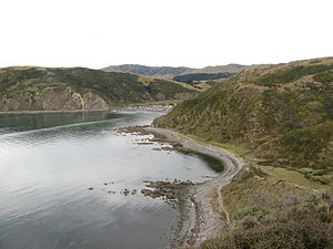 Makara beach, New Zealand.jpg