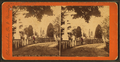 Maple Avenue, Laurel Hill cemetery, Philadelphia, Pa, from Robert N. Dennis collection of stereoscopic views.png