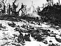 Marines wait in their foxholes - Peleliu.jpg