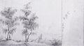 Markus Pernhart - Baumstudie - 1841.jpeg
