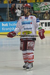 Martin Schumnig Austrian ice hockey defenceman