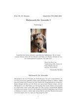 Mathematik für Anwender (Osnabrück 2020-2021)Teil IVorlesung1.pdf