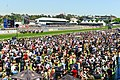 Melbourne Cup 2013.jpg