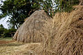 Mijikenda village 07.jpg