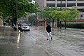 "Milwaukee (WIS) N 5th St "" Tree, Rain, Wind "" Pedestrian 1.jpg"