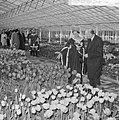 Minister Bot , de Keukenhof te Lisse geopend, in de kassen, Bestanddeelnr 917-5919.jpg
