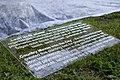 Ministru kabineta dārzeņu dobes atklāšana (7247960130).jpg