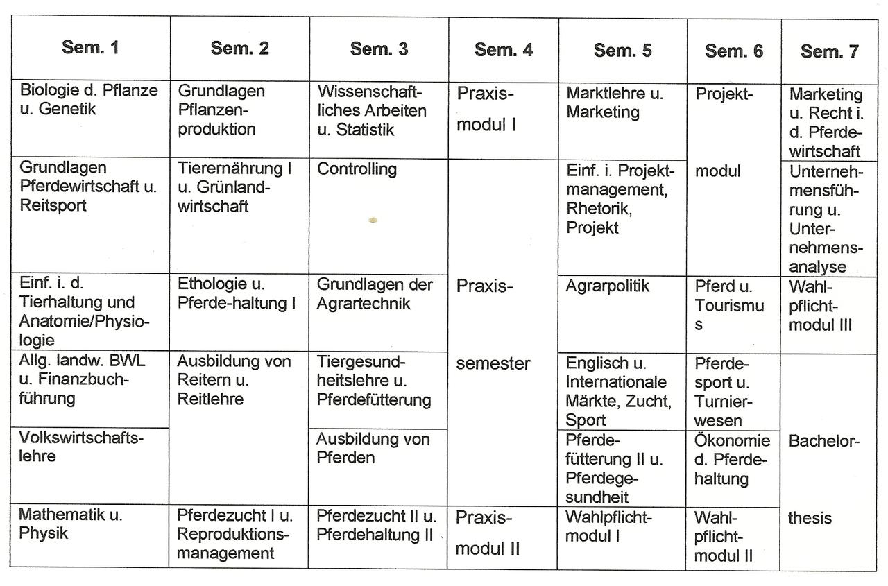 File:Modulplan Nürtingen.png - Wikimedia Commons