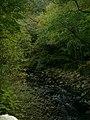 Moneypool Burn from Chain Bridge - geograph.org.uk - 70029.jpg