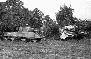 Hill 262 - The remains of a Polish Sherman tank and two German vehicles (a Panther tank and Sd.Kfz. 251 halftrack), destroyed in the vicinity of Boisjois near Point 262N