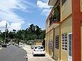 Morovis Norte, Maga Street.jpg