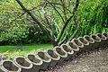 Mount Airy Arboretum - DSC03807.JPG