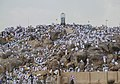 Mount Arafat3.jpg