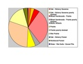 Mower Co pie chart No Text Version.pdf