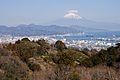 Mt.Fuji from Nihondaira 03.jpg