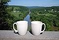Mugs Tye River Overlook JR (9348279228).jpg