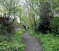 Mushroom Green, Dudley Wood - geograph.org.uk - 1267528.jpg