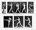 Muybridge; human figure in motion, sport games Wellcome L0018487.jpg