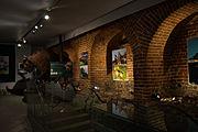 Muzeum im. Jacka Malczewskiego w Radomiu Ekspozycja przyrodnicza.jpg