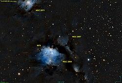NGC 2067 PanS.jpg