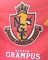 NagoyaFlag.jpg