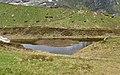 Nationalpark Hohe Tauern - Gletscherweg Innergschlöß - 29 - Auge Gottes.jpg