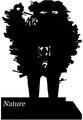 Nature (IA naturevolume26unkngoog).pdf