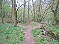 Naturschutzgebiet Eifgenbach.4.JPG