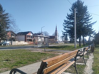 Negoslavci Municipality in Syrmia, Croatia