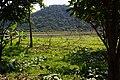 Neicheng Village 內城村 - panoramio.jpg