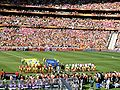 Netherlands - Denmark WC2010.jpg